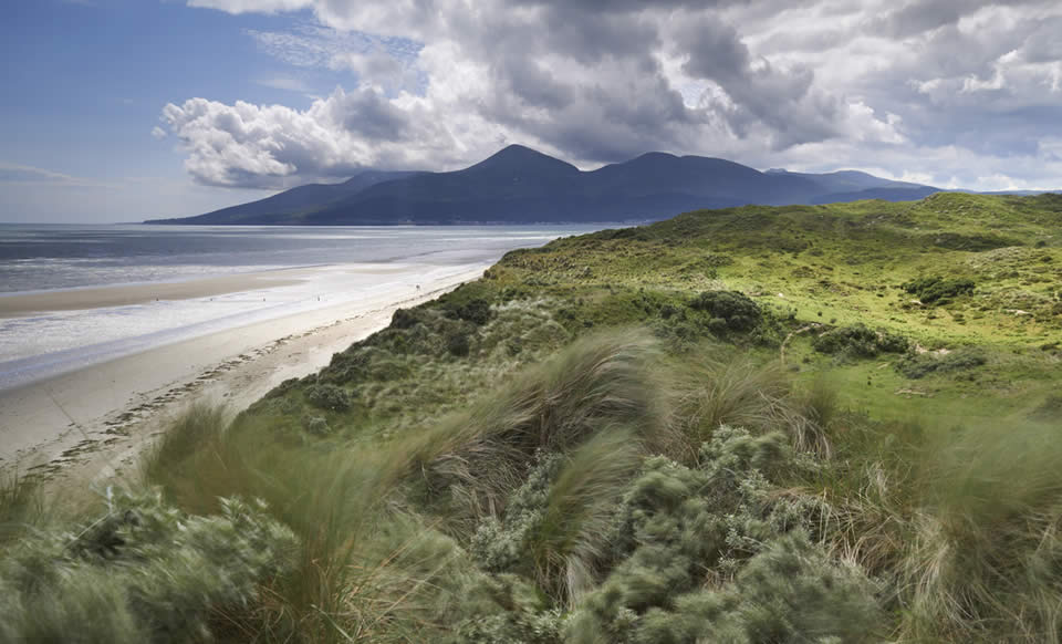 Mourne Mountains from Murlough National Nature Reserve, County Down, Northern Ireland - National Trust Images/Joe Cornish
